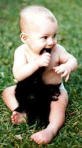 baby_biting_cat-12015